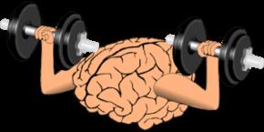 Тренировка памяти